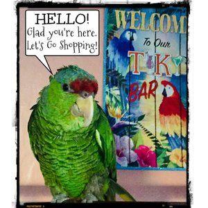 💞 HELLO & WELCOME! 💞